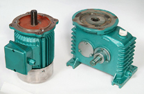 MOTOR REDUCER TAIWANESE TYPE 1 - SPARE PARTS FOR AERATORS